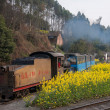 Traveling in Leshan City, Sichuan Qianwei Kayo train little train Bee Rock — Foto Stock
