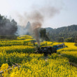 Traveling in Leshan City, Sichuan Qianwei Kayo small train station canola flower Bee Rock to the little train between — Stock Photo