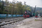 Leshan City, Sichuan Qianwei Kayo small train station will rock bee global steam engine train Expo Cultural Corridor — Foto de Stock