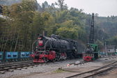 Leshan City, Sichuan Qianwei Kayo small train station will rock bee global steam engine train Expo Cultural Corridor — ストック写真