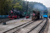 Leshan City, Sichuan Qianwei Kayo small train station will rock bee global steam engine train Expo Cultural Corridor — Zdjęcie stockowe