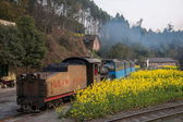 Traveling in Leshan City, Sichuan Qianwei Kayo train little train Bee Rock — Stock Photo