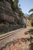 Traveling in Leshan City, Sichuan Qianwei Kayo small train station canola flower bee rock eagle beak with a small train tunnel between — Стоковое фото