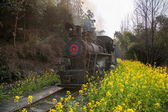 Traveling in Leshan City, Sichuan Qianwei Kayo train rapeseed dam little train between stations — Foto de Stock