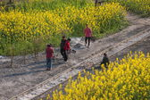 Leshan City, Sichuan Qianwei Kayo media picked up along the railway train village women slag — Stock Photo