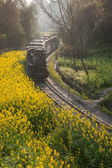 Traveling in Leshan City, Sichuan Qianwei Kayo train bees rocks and leap between the train station — Foto Stock