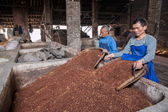 Leshan City, Sichuan Qianwei Rochester town brewery workers are placed in the fermentation lees pond continue to ferment fermentation — Stock Photo