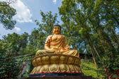 Yongchuan okres, chongqing Karla bambus Scénic jiné domy bao ji chrám buddha — Stock fotografie