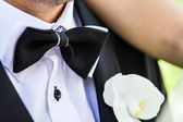 Close-up of a man with bowtie — Stock Photo