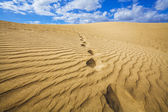 Dunas de areia — Foto Stock