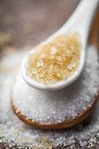 Raffinierter zucker und rohrzucker — Stockfoto