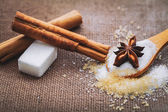 Açúcar branco e marrom — Foto Stock
