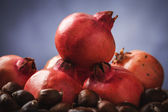 Pomegranate and chestnut — Zdjęcie stockowe
