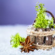 Basket with grass — Stock Photo