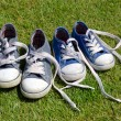 Two pairs of old sneakers on grass background — Stock Photo #26434999
