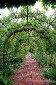 Pergola in English garden — Stock Photo