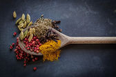 Spice Spoon — Stock Photo