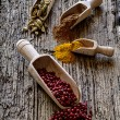 Spice Spoons — Stock Photo