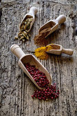 Spice Spoons — Stock Photo