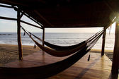 Hammocks in beach — Stock Photo