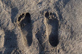 Feetprint on sand beach — Stockfoto