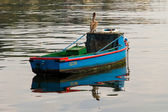 Boat with pelican — Stock Photo
