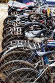 Bicycle group — Stockfoto