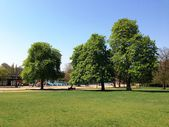 Hyde Park, London — Stockfoto