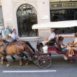 Coach, drawn by horses on the road in Barcelona, Spain — Stock Photo
