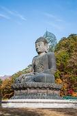 Buddha statue at Shinheungsa Temple, Seoraksan, Korea — Stock Photo
