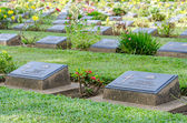 Row of grave stone in War Cemetery — Stock Photo