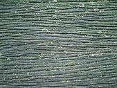Schwarz holz textur-hintergrund — Stockfoto