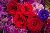 Piękne róże jako tło — Zdjęcie stockowe