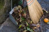 Autumn in the garden — Stock Photo