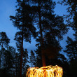 Fire spinning in forest at night — Stock Photo
