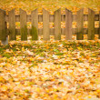 Small wooden fence and yellow leaves of autumn — Stock Photo