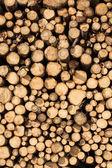 Mucchio di legno tritato — Foto Stock