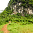 Stock Photo: Path leading to karst mountain