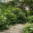 View over guilin stone stairs foreground — 图库照片