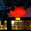 Traditional red chinese lamp — Stock Photo #34770607