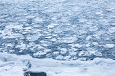 Ice pieces in a lake — Foto Stock