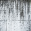 Messy grunge concrete wall texture — Stock Photo