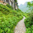 Stone path in yangshuo china — Stock Photo