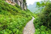 Stone path in yangshuo china — Stock Photo