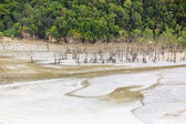 Aerial view from beach at low tide — Stock Photo