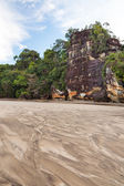 Big cliff lush jungle and sand — Stock Photo