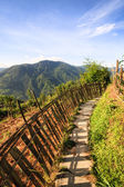 Chinese mountains and stone pathway — Stock Photo