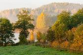 Autumn morning landscape — Stock fotografie
