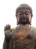 Großer buddha isoliert auf weiss — Stockfoto