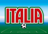 Italy soccer colors football — Stock Vector